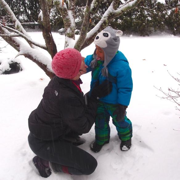 snowy Maine