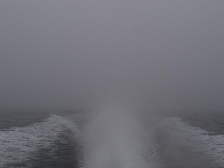 Fog, Maine