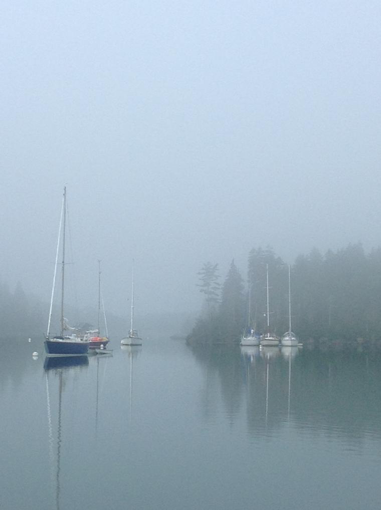Perry Creek, fog