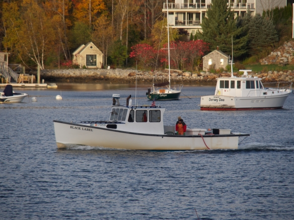 lobster boat/Rockport Harbor