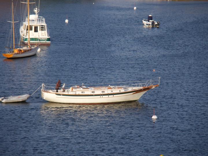 sailboat/Rockport Harbor