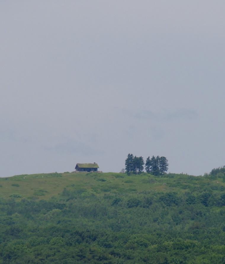 Beech Hill