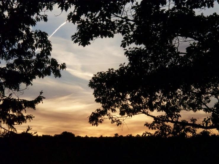 fall/sunset
